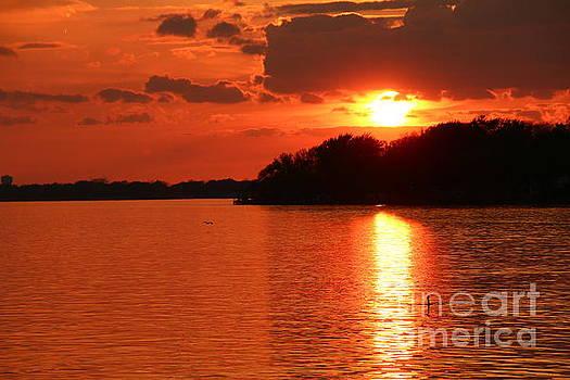 Golden Upper Niagara River Sunset  by Tony Lee