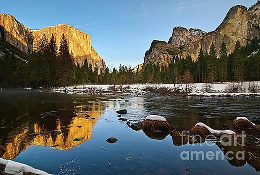 Jamie Pham - Golden View - Yosemite National Park.