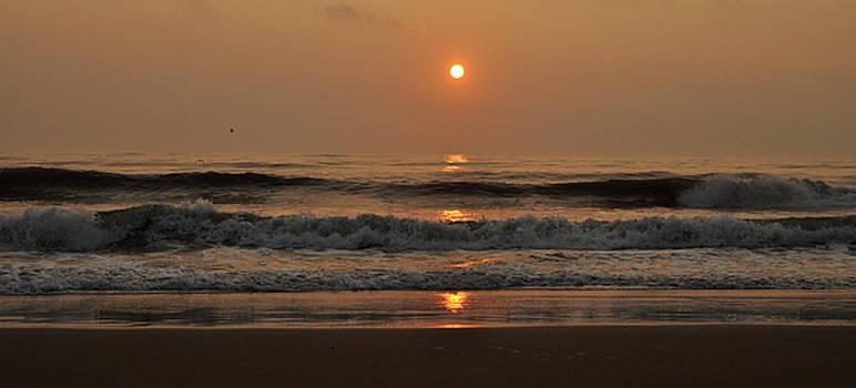 Golden waves by Jana Goode