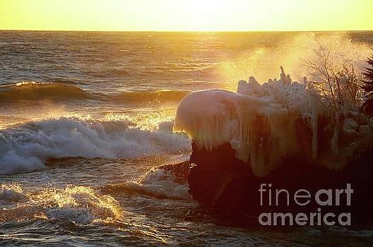 Golden Waves of Superior by Sandra Updyke