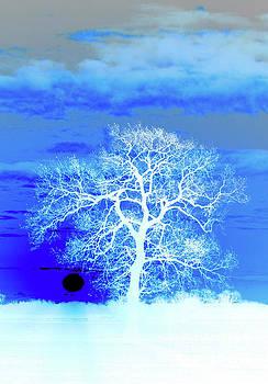 Darren Burroughs - Winter Sunrise