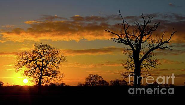 Darren Burroughs - Golden Winters Sunrise