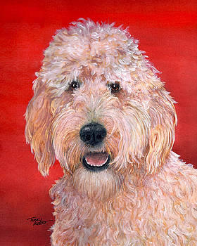 Goldendoodle by Terry Albert