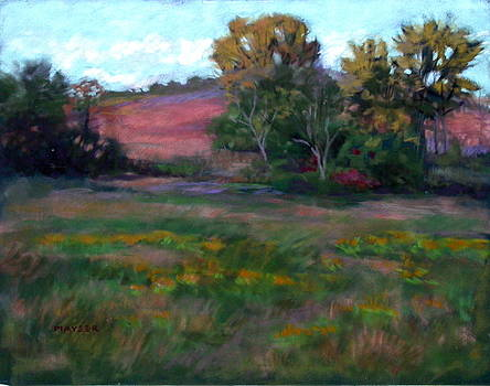 Goldenrod Afternoon by Julie Mayser