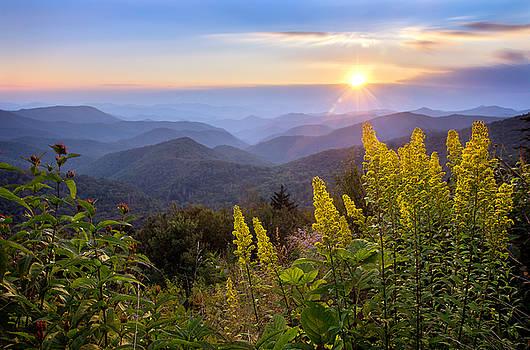Goldenrod Sunset by Dawnfire Photography