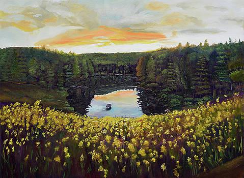 Goldenrods on Davenport Lake-Ellijay, GA  by Jan Dappen