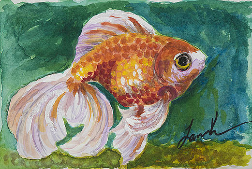 Goldfish by Laura Ross