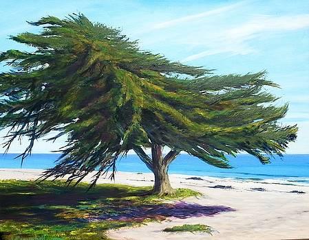 Goleta Beach Oasis by Jeffrey Campbell