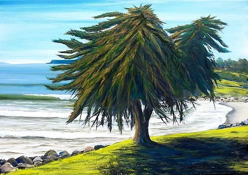 Goleta Survivor by Jeffrey Campbell