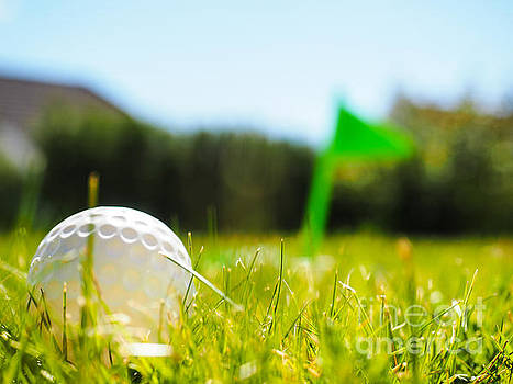 Golf ball laying in green grass by Arve Bettum