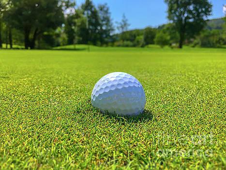Golf Ball by Mats Silvan