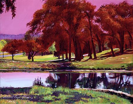 Golf Course Dawn by David Lloyd Glover