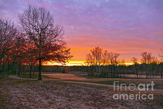 Golf Course Sunrise by Catherine Sherman