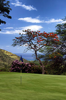 Golf in Hawaii by Debby Richards