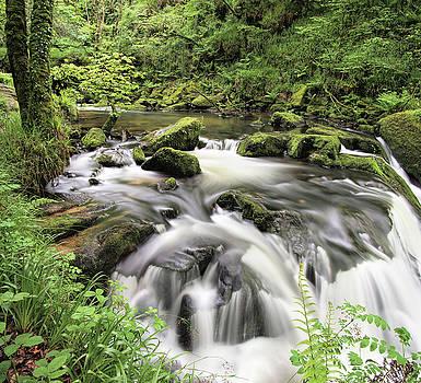 Golitha Falls by Pete Hemington