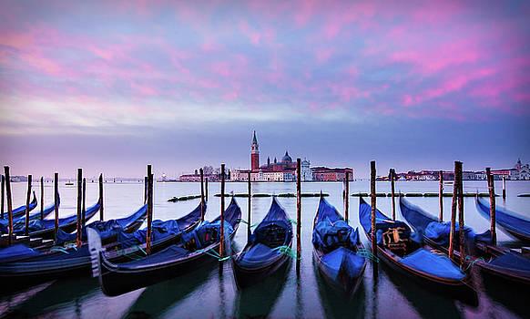 Gondolas at Dawn - Venice by Barry O Carroll