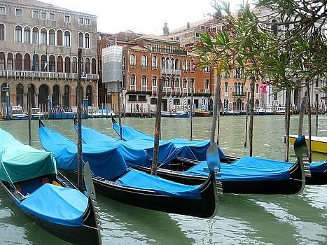 Gondolas of Venice by Lisa Boyd