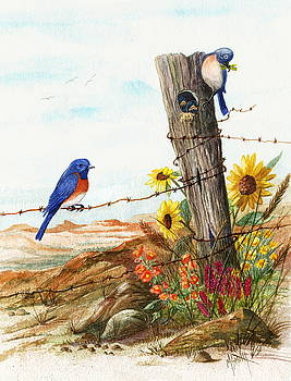 Gonna Find Me A Bluebird by Marilyn Smith