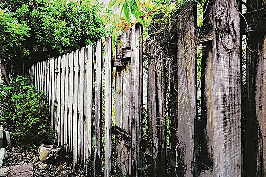 Good fences, good neighbors by Nora Martinez