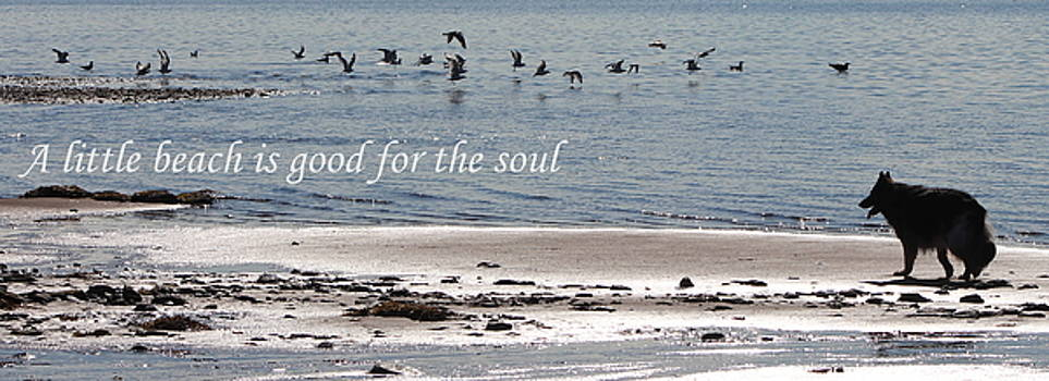 Good for the Soul by Sue Long
