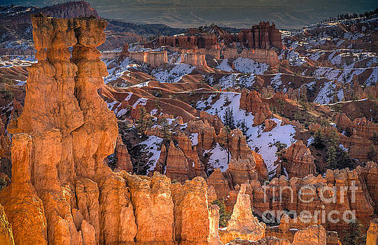 Good Morning Bryce by Jennifer Magallon