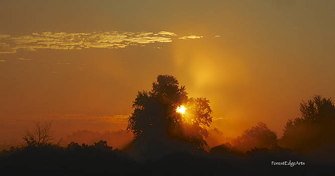 Good Morning by Dick Bourgault