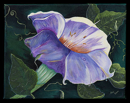 Good Morning Glory by Sue Ervin