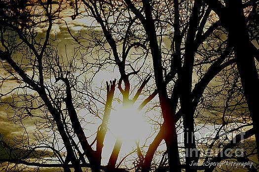 Good Morning by Janice Spivey