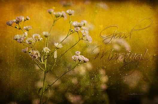 Good Morning by Joy Gerow