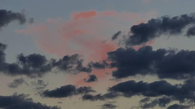 Good Night Rose Sky by Barkley Simpson