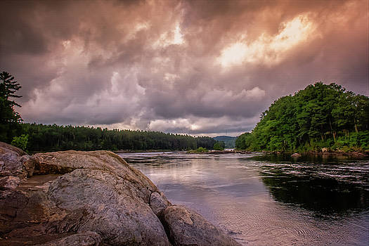 Googin's Island by Guy Whiteley