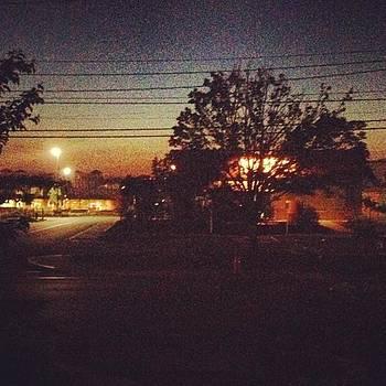 Early Mornings by Jennifer Wright