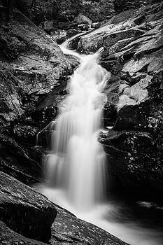 Gorge Waterfall in black and white by Darryl Hendricks