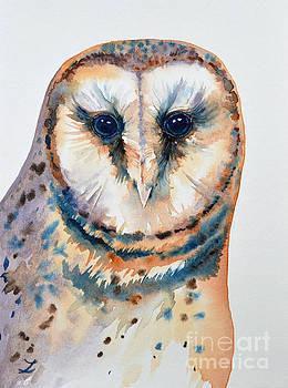 Zaira Dzhaubaeva - Gorgeous Barn Owl