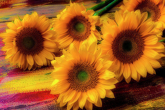 Gorgeous Lovely Sunflowers by Garry Gay