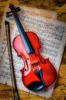 Gorgeous Violin On Sheet Music by Garry Gay
