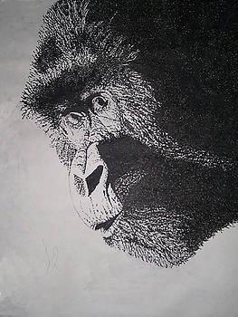 Gorilla Love by Tiffany Lynn Thielke