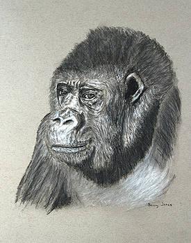 Gorilla - Wildlife Art by Barry Jones