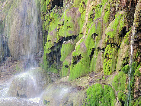 Gorman Falls by Krin Van Tatenhove