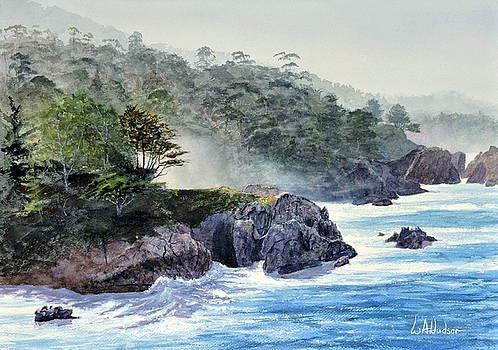 Gossamer Fog by Bill Hudson