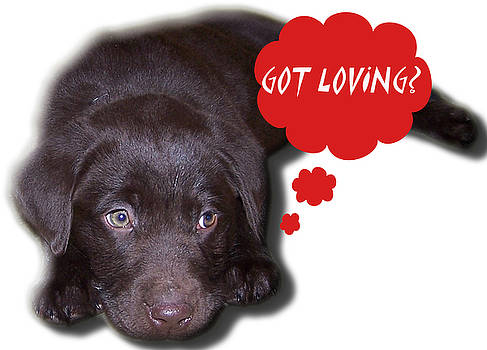 Got Loving by Mike Hazelwood