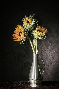 Got Sunflowers by Jerri Moon Cantone