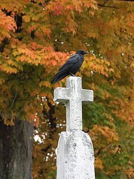 Gothicrow Images - Gothic Autumn Raven On Cross