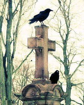 Gothic Crows In Muted Colors by Gothicrow Images