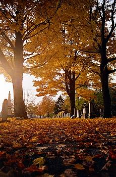 Gothicrow Images - Gothic Golden Leaves Of Autumn
