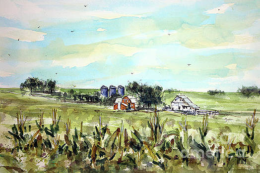 Gottsch's Green Acres by Tim Ross