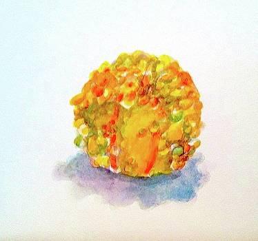 Gourd 1 by Thom Duffy