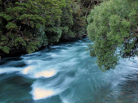 Gowan River by Brian Puyear