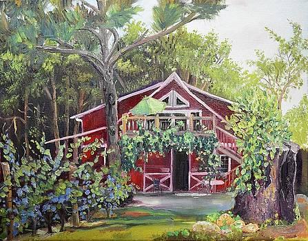 Gracie's Place at Ellijay River Vineyard - Ellijay, GA by Jan Dappen