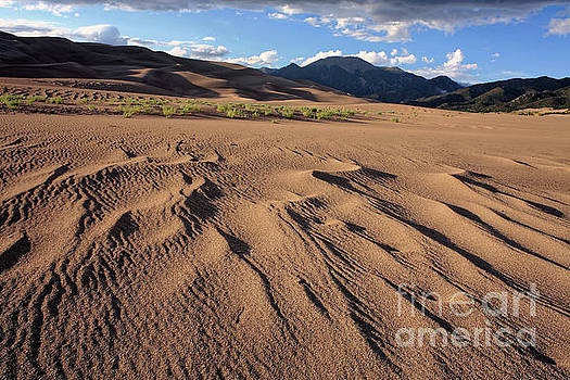 Great Sand Dunes N.P., Colorado, USA by Kevin Shields